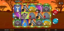 Big Game Spin 16 Online Slot