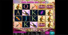 Birds Of Wonder Online Slot