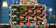 Colin The Cat Online Slot