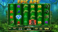 Epic Ape Online Slot