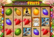 Ninja Fruits Online Slot