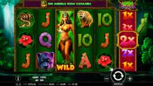 Panther Queen Online Slot