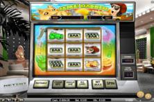 Safari Madness Online Slot