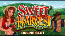 Sweet Harvest Online Slot