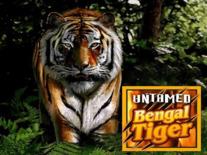 Untamed Bengal Tiger Online Slot