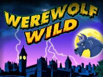 Werewolf Wild Online Slot