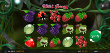 Wild Berry Online Slot