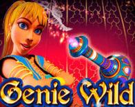 Wild Genie Online Slot