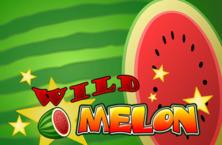 Wild Melon Online Slot