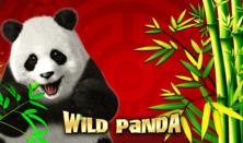 Wild Panda Online Slot